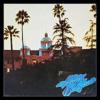 HOTEL CALFORNIA/EAGLES(ホテル・カルフォルニア/イーグルス)
